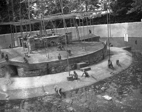 monkey-island-a-feature-attraction-at-washington-park-zoo-in-michigan-city-indiana-the-photo-was-taken-on-june16-1951
