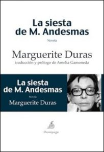 cubierta_andesmas_desarrollo